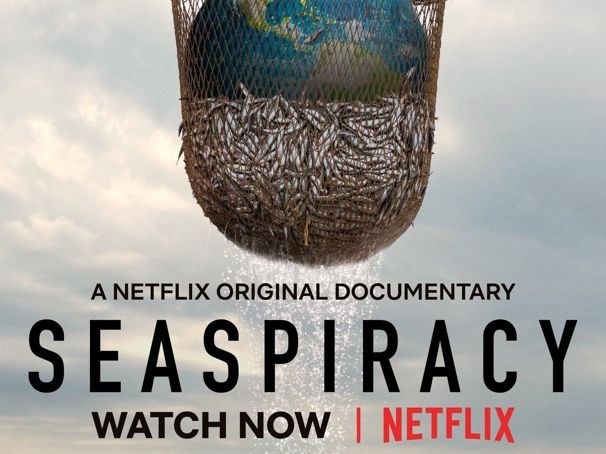 "Netflix: ""Seaspiracy"" Documentary Worksheet"