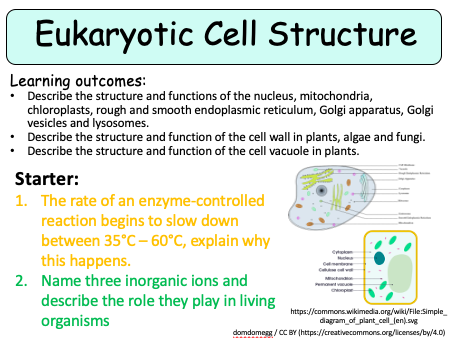 NEW (2016) AQA AS Biology – Eukaryotic Cell Structure