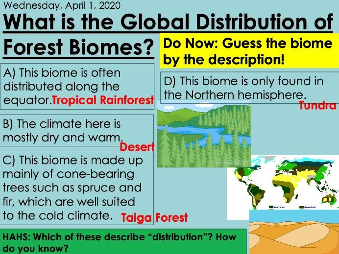 KS3 Forest Under Threat (Edexcel 9-1 B) 2-Biomes PEEL