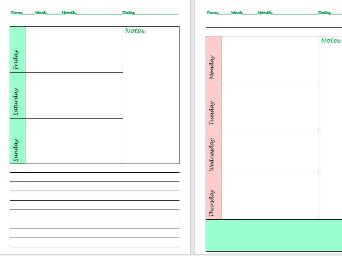 Teacher organiser/planner/diary