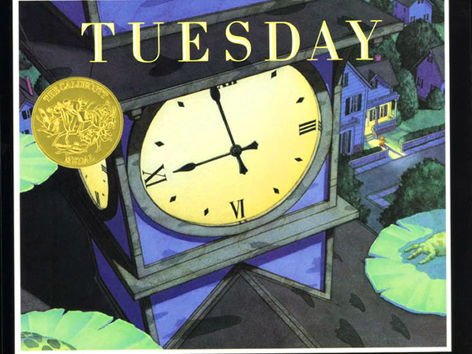 Tuesday by David Wiesner  Unit of work year 4