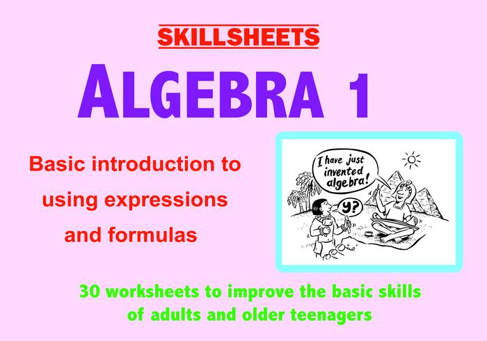 ALGEBRA 1 - Basic Skills