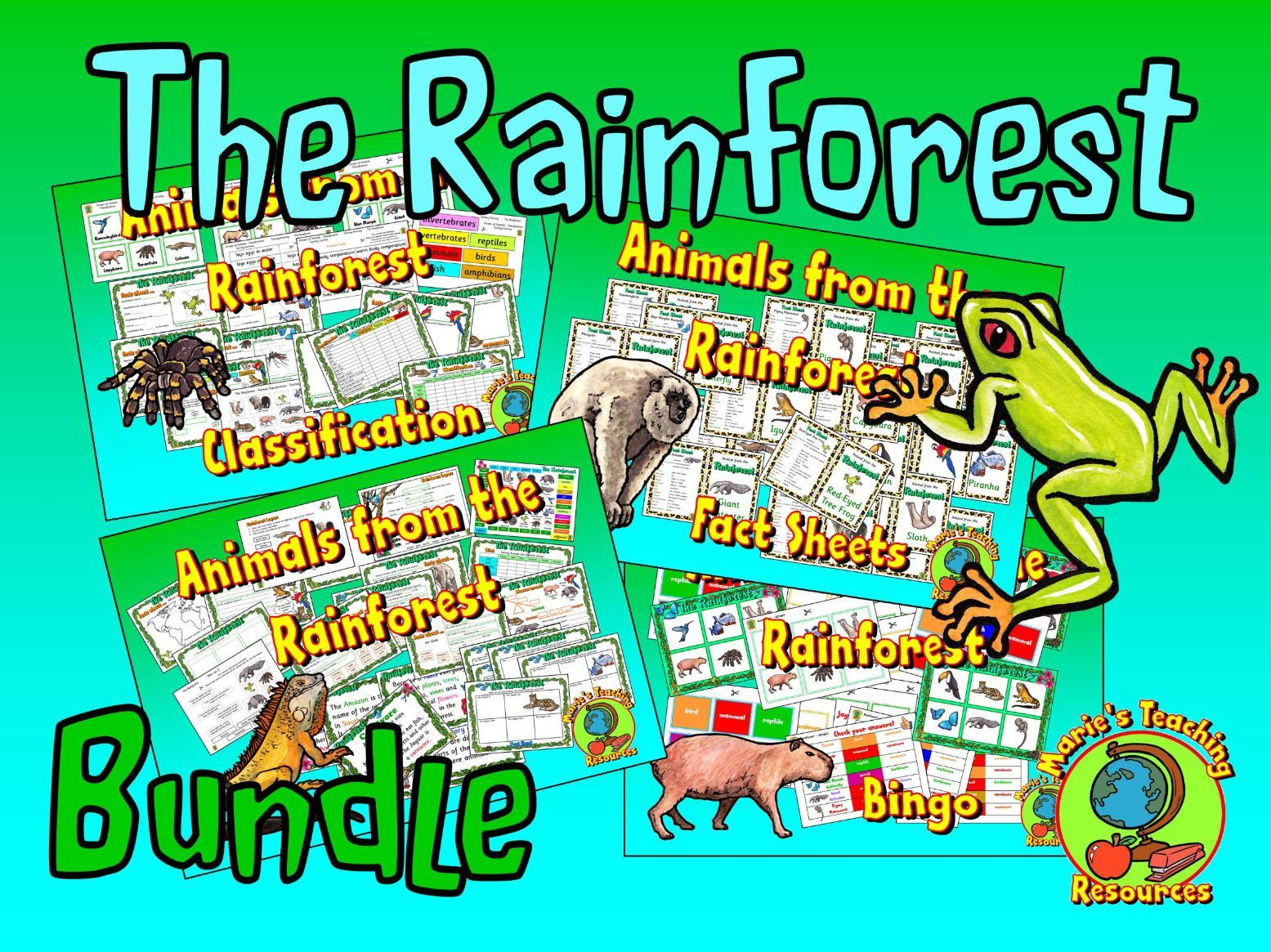Animals from the Rainforest Bundle