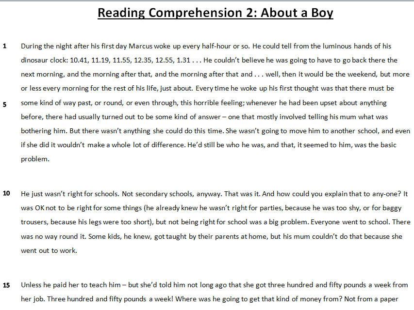 Fiction Reading Comprehension: About a Boy