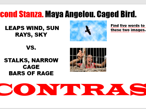caged bird maya angelou compare and contrast lives both bi I know why the caged bird sings essay race relations in i know why the caged bird sings by maya angelou compare and contrast essay.