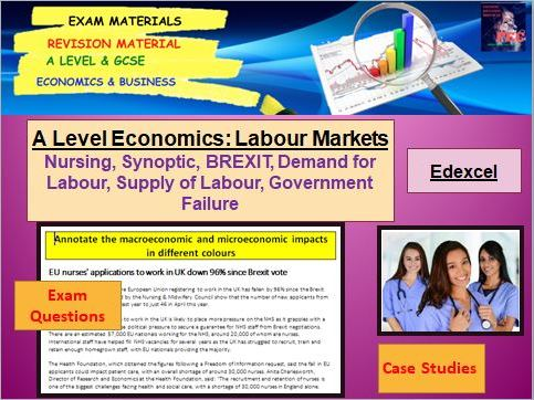 Supply of Nurses in the Labour Market Lesson: A Level Economics