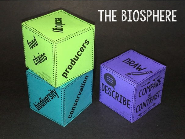 The Biosphere Review Qubes