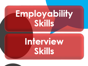 Employability/Work Skills: Interview Skills
