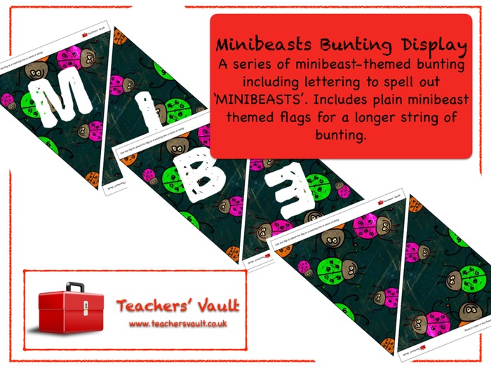 Minibeasts Bunting Display
