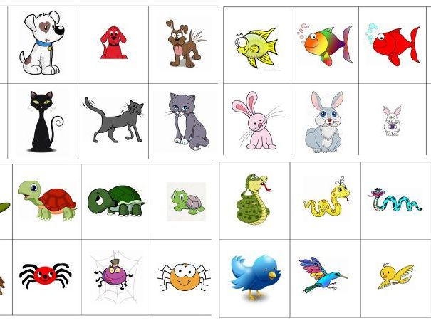 German - Pets - Powerpoint plus Happy Families Speaking and Listening Card Game
