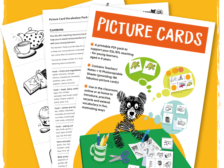 ESL/EFL Picture Cards Vocabulary Pack