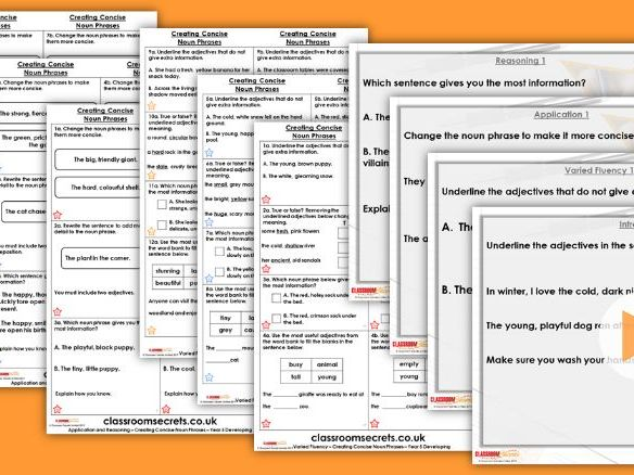 Grammar Year 5 Creating Concise Noun Phrases Spring Block 2 Step 2 Lesson Pack