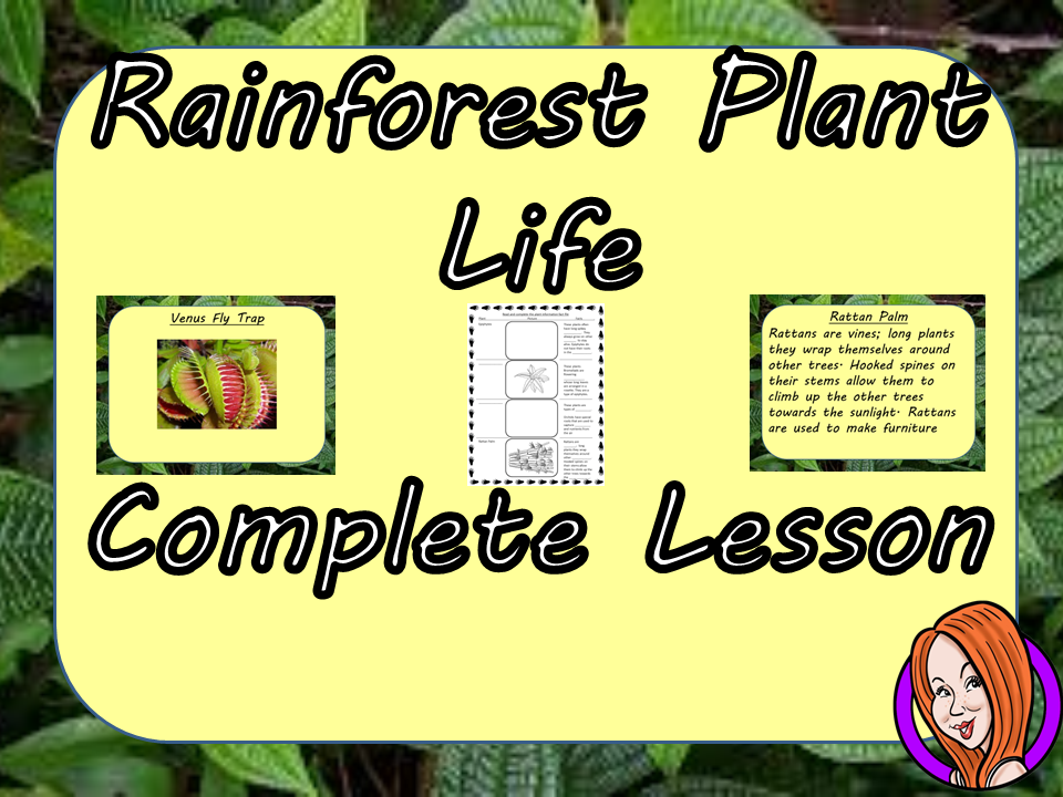 Identifying Rainforest Plant Life  -  Complete STEAM Lesson