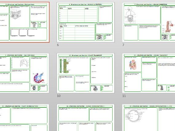 Cambridge CIE IGCSE Biology revision worksheets