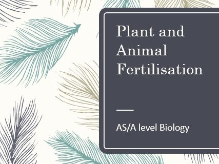 Plant and animal fertilisation AS Biology
