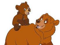 Story Book and Real Bears - a Unit Study