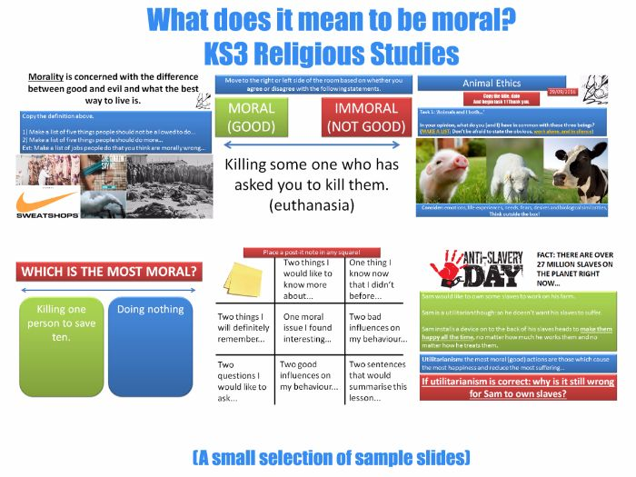 'What Does it Mean to be Moral?' -KS3- Moral Philosophy, Animal Rights & Religion [7 Lessons]