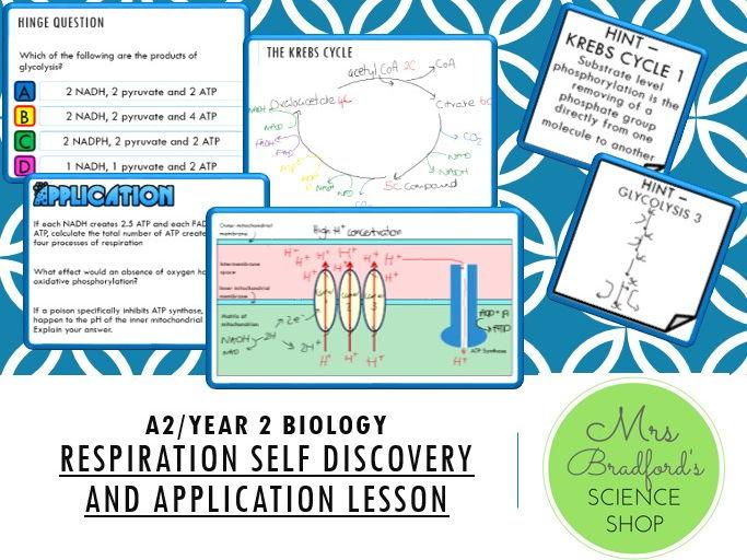 Year 2 Biology - Aerobic Respiration