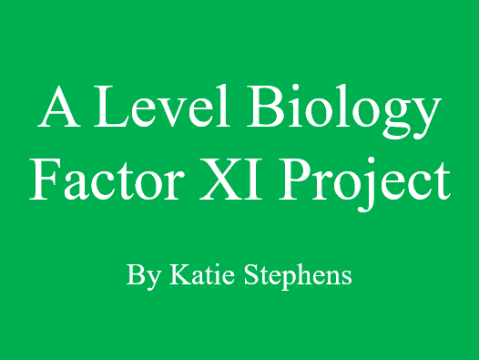 A Level Biology Project on Factor XI
