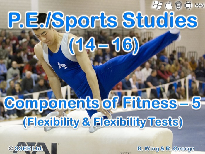 PE307ST - Components of Fitness - 5 (Flexibility)