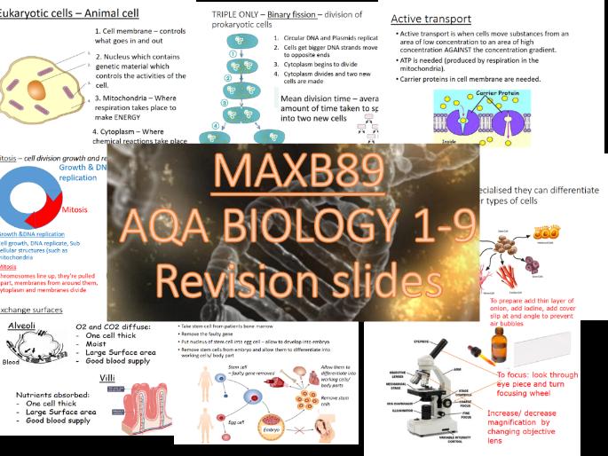 FREE!! GCSE 9-1 Revision Biology AQA  Unit 1 Revision Slides