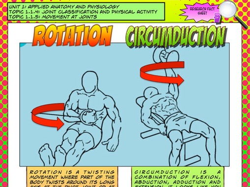 NEW GCSE PE – Unit 1 – Topic 1 – Lesson 3 - Joint Classification and Movement - Rotation & Circumduc
