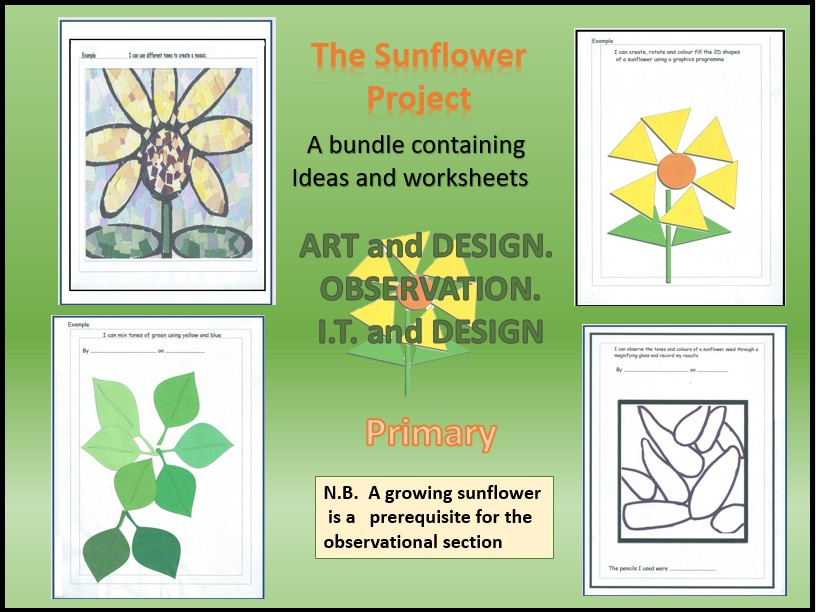 I.T.   Art and  design  . The Sunflower project