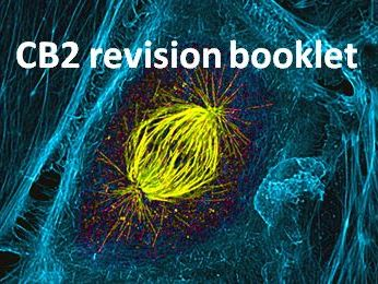 CB2 revision booklet