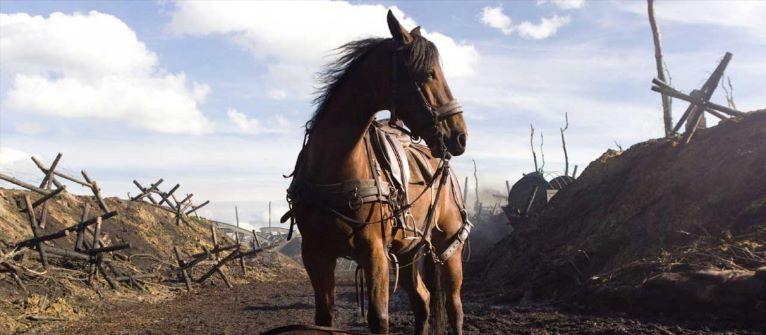 War Horse SOL