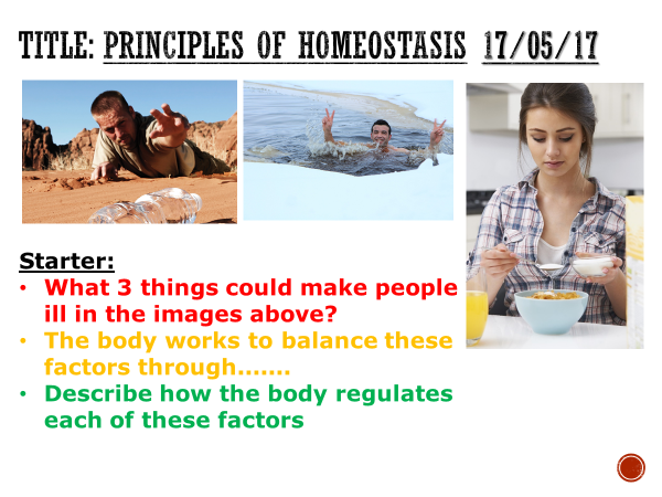 Principles of homoeostasis - complete lesson (KS4)