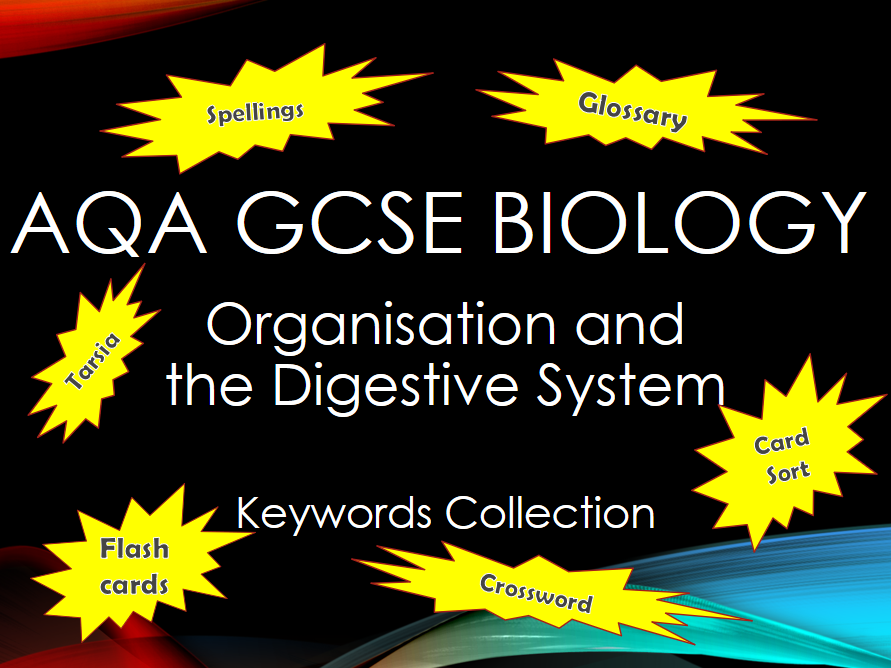 AQA GCSE Biology - B3 - Organisation and the Digestive System Keyword Collection