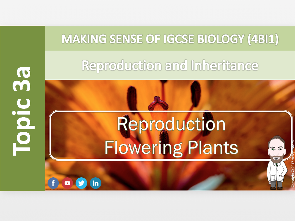 IGCSE Biology 9-1 - 3a Reproduction - Flowering plants