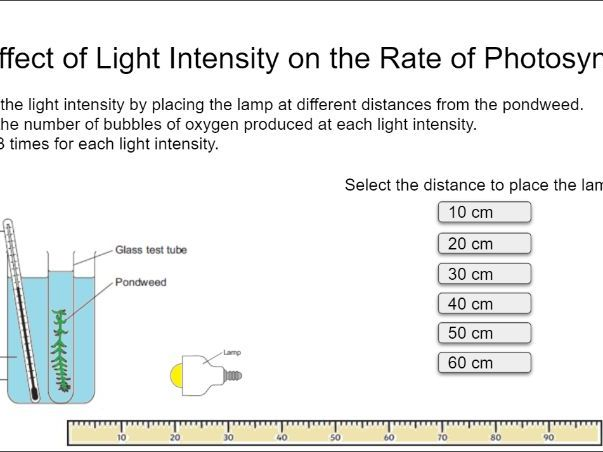 Effect of Light Intensity on the rate of Photosynthesis
