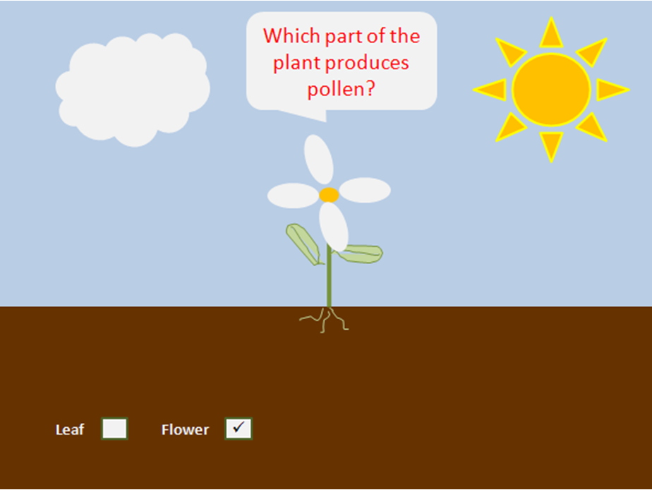 KS1 Plant Science Slideshow