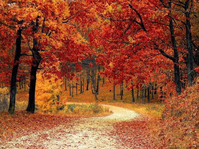 Edexcel GCSE Time and Place Poetry: To Autumn /Home Thoughts from Abroad