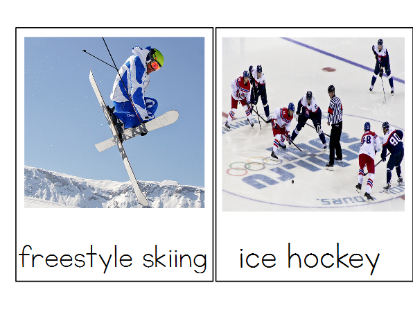 Winter Olympics - Montessori 3 Part Cards - Reading Classification