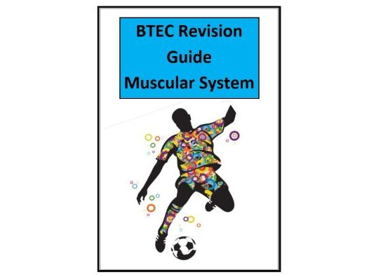 Btec Level 3 - Sport - Unit 1 - Muscular System Revision Notes/Guide - Includes Tick List & Test