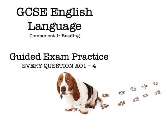 GCSE English Language Component 1 - Guided Exam Practice (Pat & Bruce)