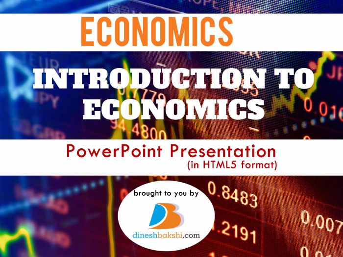 Introduction to Economics - IGCSE/IB/A Level Economics