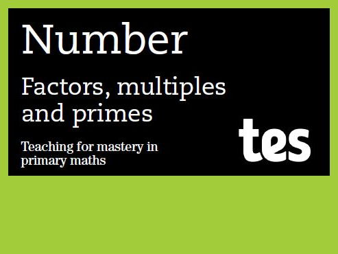 Factors, multiples and primes: Teaching for mastery booklet