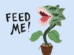 AQA Feed Me (Git It) Analysis (Little Shop of Horrors)