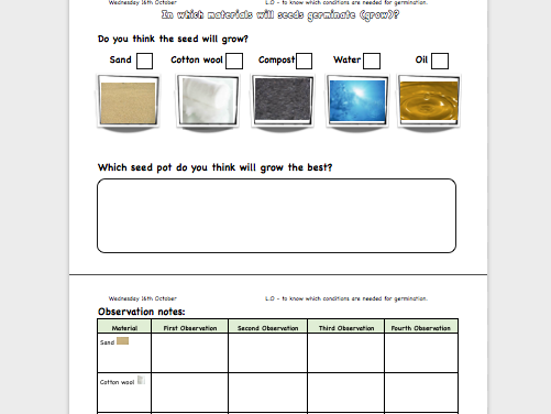 What do plants need? (worksheet)