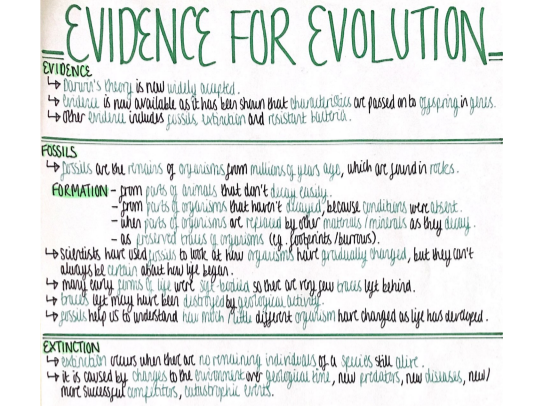 Evidence/Evolution (Genetics and Evolution) Revision Poster [AQA GCSE Biology Double and Triple 9-1]