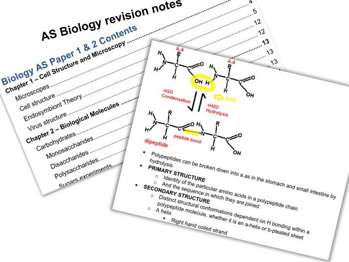 My AS Biology Notes || 102 Pages