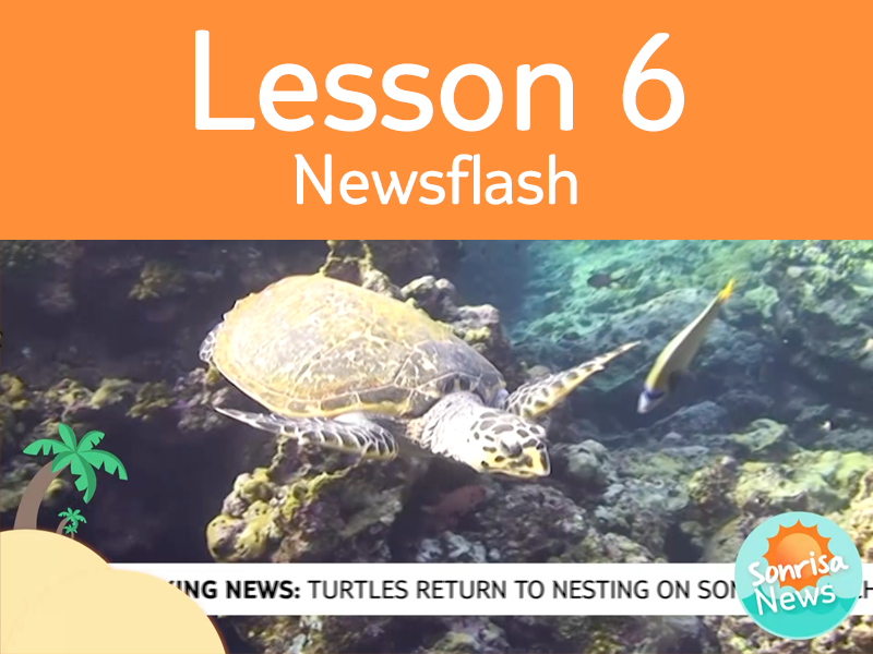 Lesson 6 - Activity 3: Newsflash