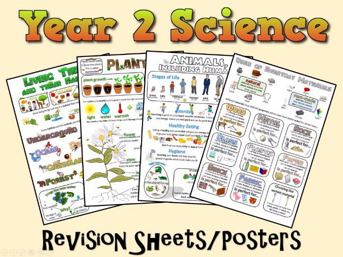 Year 2 Science Posters/Revision Sheets