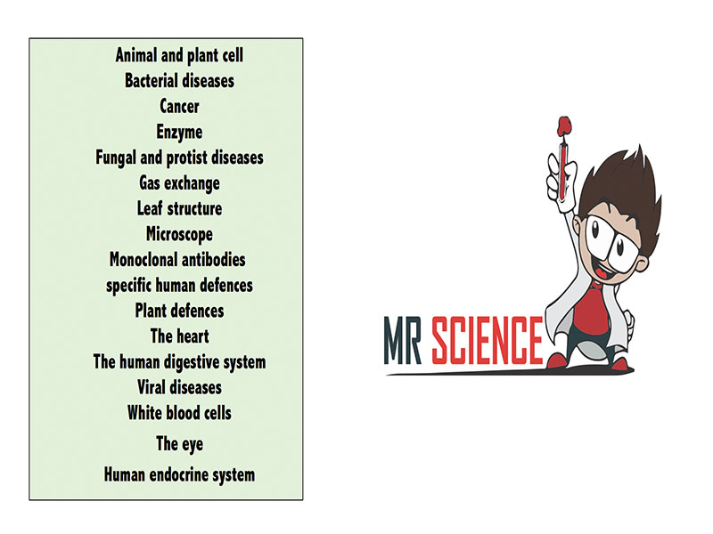 Human endocrine system worksheet by mrscience Teaching – The Human Endocrine System Worksheet