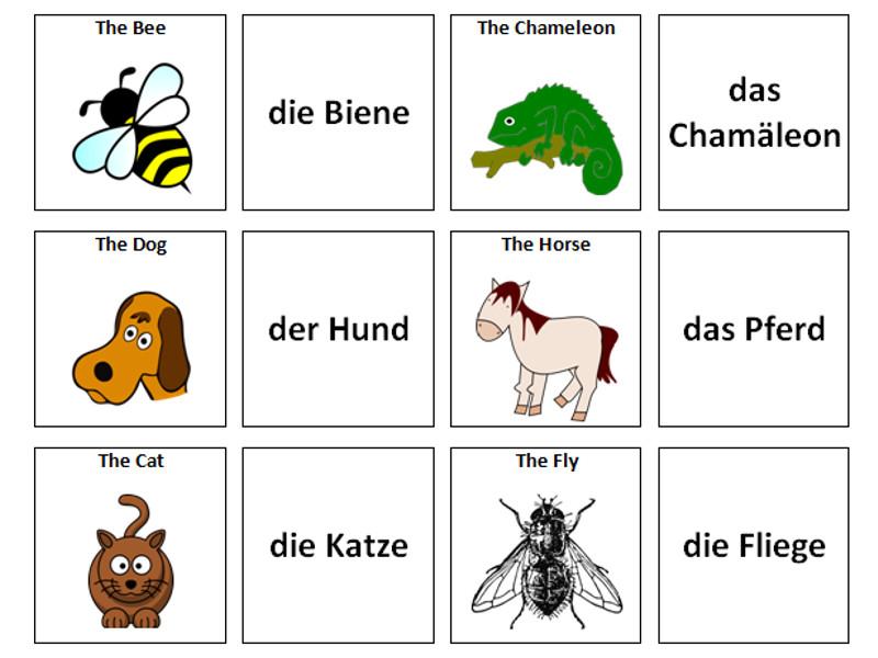 Animals: German Vocabulary Card Sort