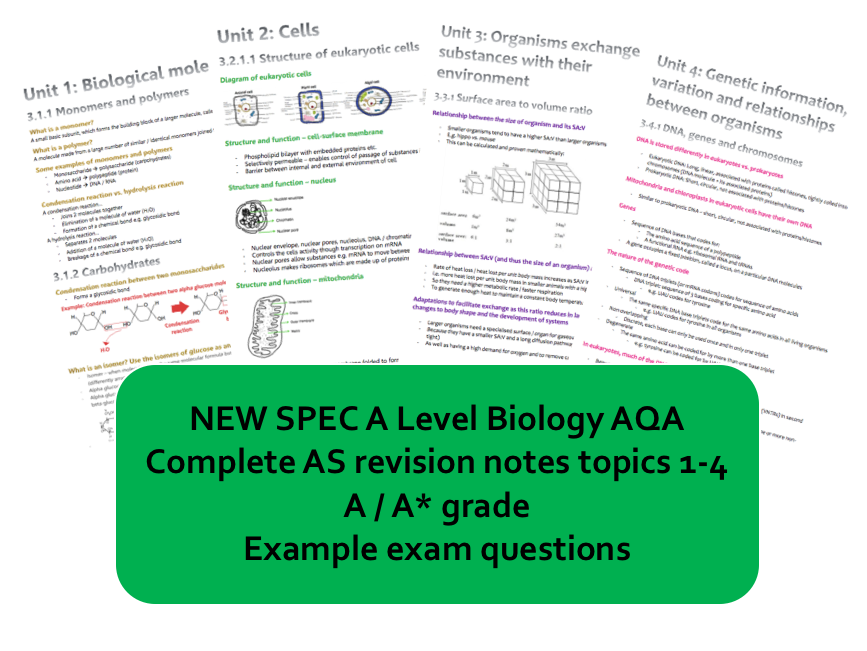 NEW SPEC AS BIOLOGY AQA FULL REVISION NOTES A/A* (a level year 1)