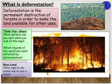 KS4 B17.4 Deforestation
